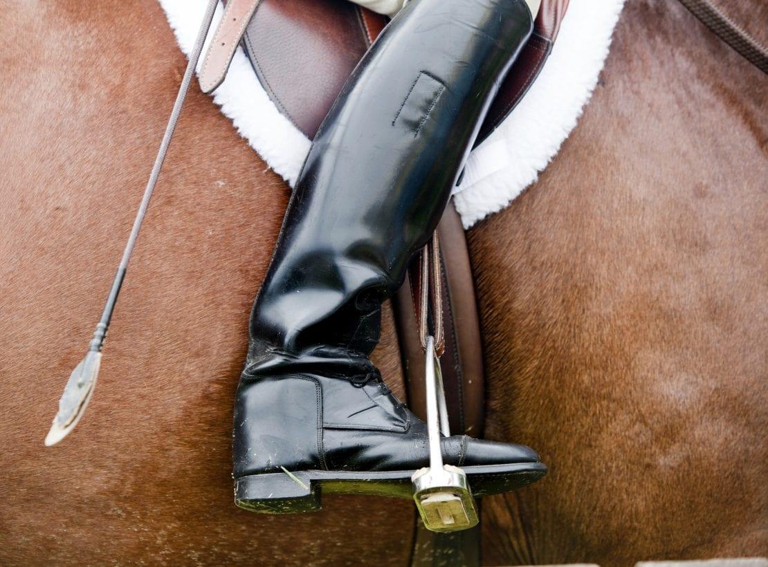 Schemmer_Peter Hind_Equestrian